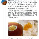 【画像】タピオカをイクラのタレに漬けた結果www