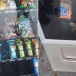 【画像】アライグマ、自販機で売られる