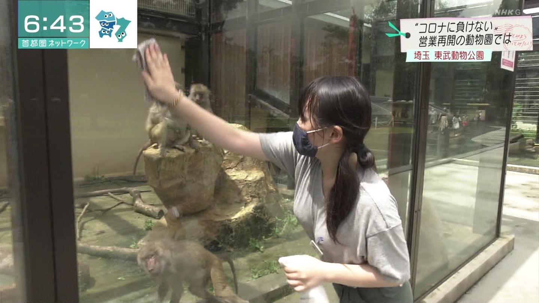 【画像】めちゃくちゃ可愛い女店員がニュースで紹介される