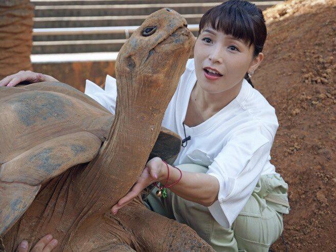 【画像】新田恵美さん、またも過激な画像を上げてアンチを挑発