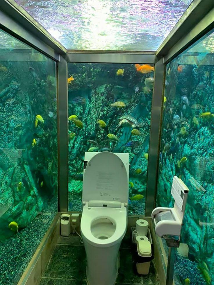 【画像】水族館トイレがこちらw