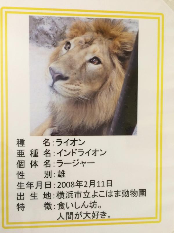 【画像】動物園さん、紹介文が雑過ぎて誤解を生んでしまう・・・