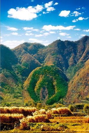 【画像】韓国でHすぎる山が発見されてしまうwww