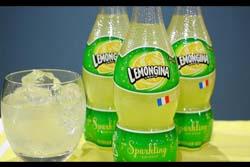 サントリー「レモンジーナ」、売れ過ぎて販売休止 年間販売目標を2日でクリアする異常事態