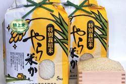 「やら米か」の米袋デザイン決定-応募は予想を上回る587点