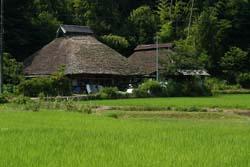 【調査】「ほどよく田舎」だと思う都道府県