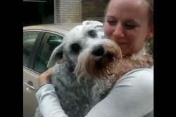 【動画】14年ぶりの再会に喜びのあまり気絶してしまう犬が話題に