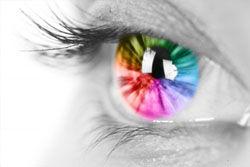 色盲の見る世界wwwwww